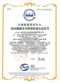 职业健康安全管理体系(中文)